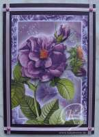 2011-blumenkarte07